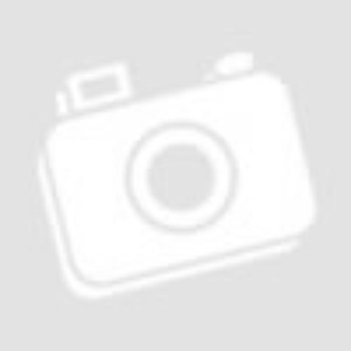 Parker Royal IM Premium Golyóstoll Pearl Arany klipsz